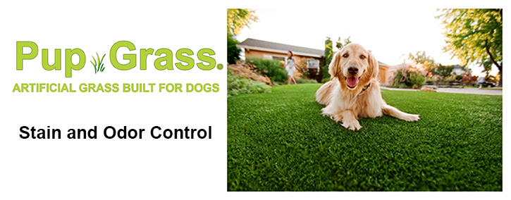 Pup Grass Patio Lawn Kits