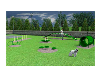 dog-agility-kits